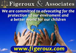 Corporate Sponsor - Figeroux & Associates